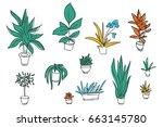 set of different plants  cactus....   Shutterstock .eps vector #663145780