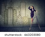 business woman on a ladder... | Shutterstock . vector #663203080