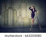 business woman on a ladder... | Shutterstock . vector #663203080