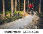 mountain biker riding on bike... | Shutterstock . vector #663216238