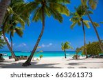 coconut palm trees with blue...   Shutterstock . vector #663261373