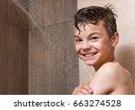 portrait of happy teen boy... | Shutterstock . vector #663274528