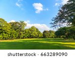green trees in beautiful park... | Shutterstock . vector #663289090