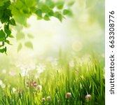 beauty spring and summer... | Shutterstock . vector #663308776
