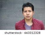 good looking hispanic male... | Shutterstock . vector #663312328