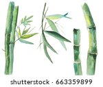 illustration of watercolor... | Shutterstock . vector #663359899