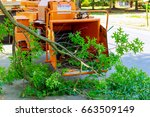 landscapers using chipper... | Shutterstock . vector #663509149