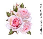 flower arrangement of pink... | Shutterstock . vector #663523744
