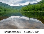 landscape of lake with... | Shutterstock . vector #663530434