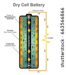 dry cell uses a paste... | Shutterstock .eps vector #663566866