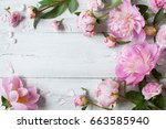 pink peonies and roses on a... | Shutterstock . vector #663585940