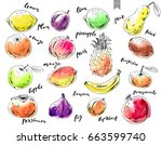 hand drawn ink sketch and... | Shutterstock .eps vector #663599740