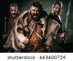 vikings with their konung in a... | Shutterstock . vector #663600724