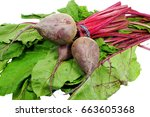 Small photo of beet green