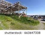 Small photo of Air-dried cod fishstock on racks and houses of villagers in the background, at Henningsvar, Lofoten, Norway