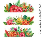 banner from tropical plants and ... | Shutterstock .eps vector #663671668