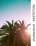 palm trees branches against sky.... | Shutterstock . vector #663707104