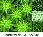 green marijuana background... | Shutterstock .eps vector #663727330