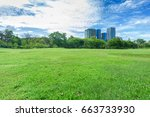 green grass field in park at... | Shutterstock . vector #663733930