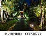 Night Lighting In Tropical...