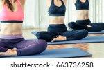 women practicing yoga pose in... | Shutterstock . vector #663736258