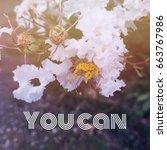 inspiration motivation quote... | Shutterstock . vector #663767986