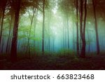 filtered foggy forest. clearing ... | Shutterstock . vector #663823468