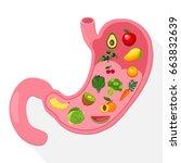 illustration of human internal...   Shutterstock .eps vector #663832639