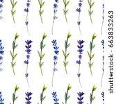 watercolor blue lavender wild... | Shutterstock . vector #663833263