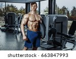 handsome man with big muscles ... | Shutterstock . vector #663847993