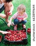 siblings washing strawberries... | Shutterstock . vector #663899644