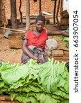 lilongwe  malawi   september 05 ... | Shutterstock . vector #663907054