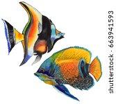watercolor aquatic underwater... | Shutterstock . vector #663941593