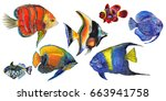 watercolor aquatic underwater... | Shutterstock . vector #663941758