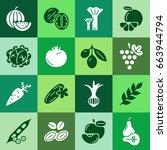 digital green vegetable square... | Shutterstock .eps vector #663944794
