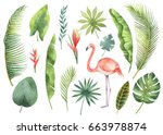 watercolor set tropical leaves... | Shutterstock . vector #663978874