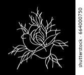 rose on a black background... | Shutterstock .eps vector #664000750