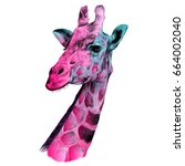 the head of a giraffe sketch... | Shutterstock .eps vector #664002040