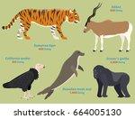 different wildlife animals... | Shutterstock .eps vector #664005130