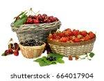 summer gifts  cherry ...   Shutterstock . vector #664017904