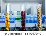 chemical laboratory of the food ... | Shutterstock . vector #664047040