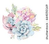 watercolor vintage succulents... | Shutterstock . vector #664050169