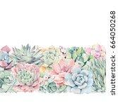 watercolor vintage succulents... | Shutterstock . vector #664050268