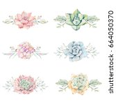 watercolor vintage succulents... | Shutterstock . vector #664050370