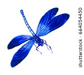 Stock photo insect dragonfly in a watercolor style isolated aquarelle dragonfly for background texture 664054450