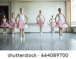 cute little ballerinas in pink... | Shutterstock . vector #664089700