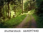 black forest hiking trail... | Shutterstock . vector #664097440