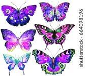 beautiful violet butterflies ... | Shutterstock . vector #664098196