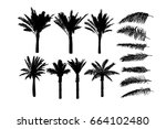 set object tracing palm tree.... | Shutterstock .eps vector #664102480