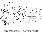 flock of birds silhouette.... | Shutterstock .eps vector #664107538